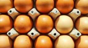 How to Decode Egg Carton Labels